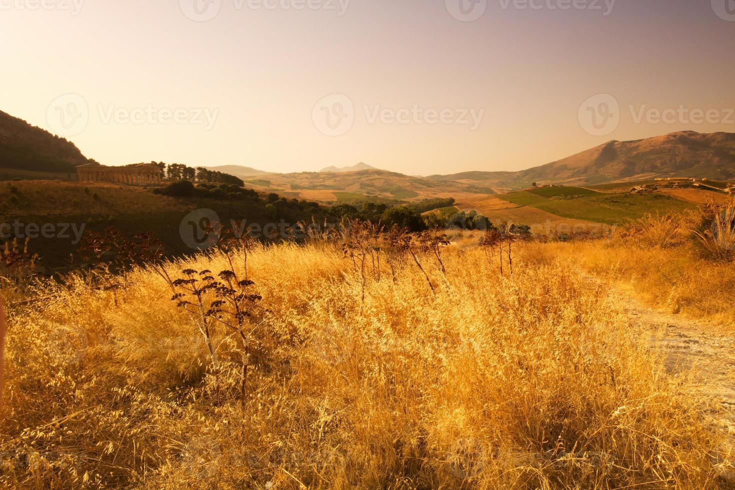 der dorische Tempel von Segesta foto