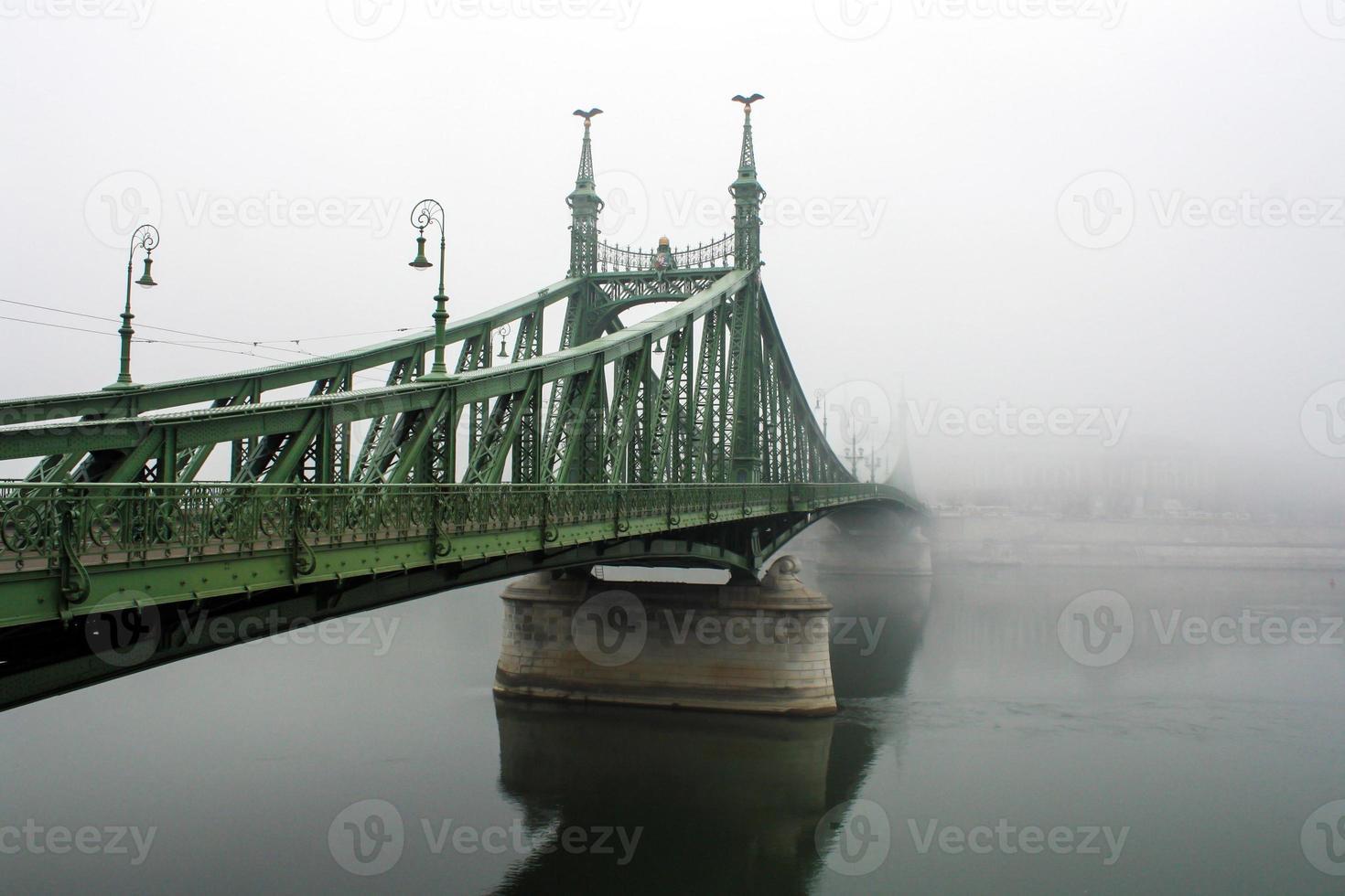 Freiheitsbrücke Budapest foto