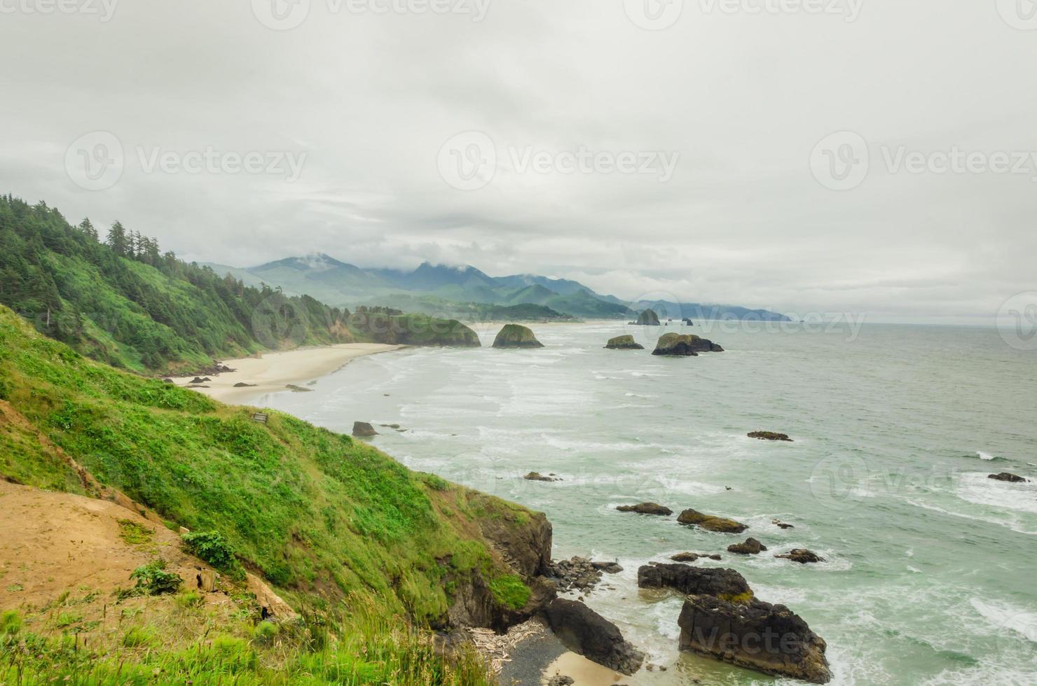 Oregon Küste an einem nebligen Tag foto