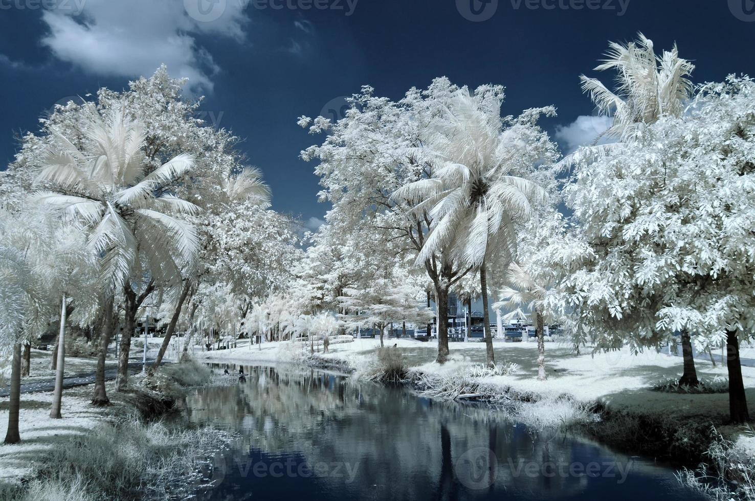 öffentlicher park in nontaburi, thailand im nahen infrarot aufgenommen foto
