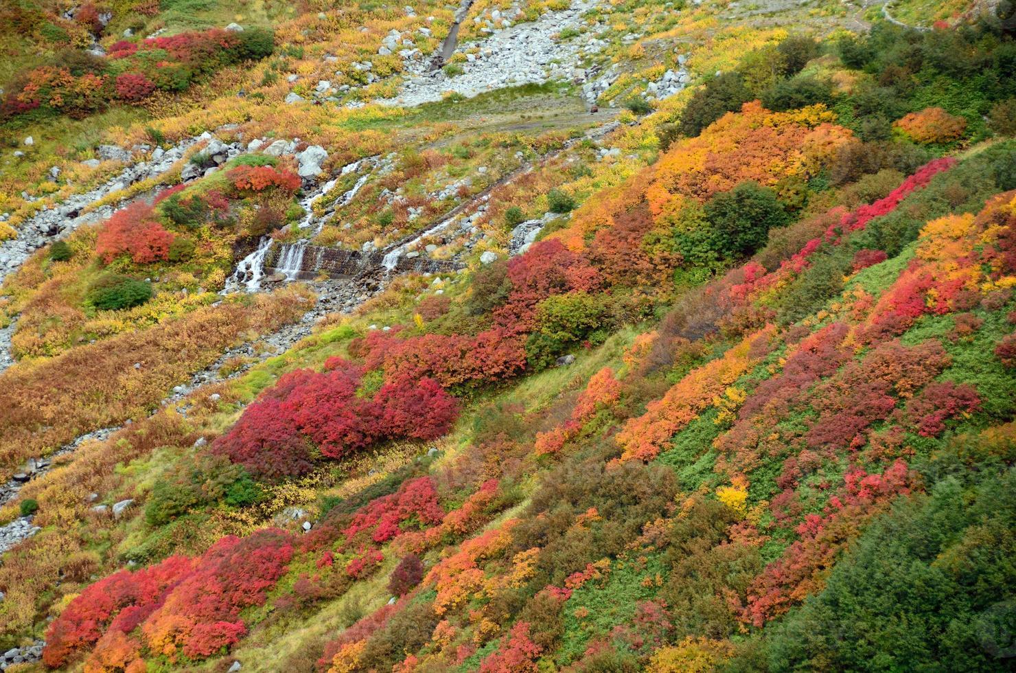 Herbstfarben, Tateyama, Japan foto