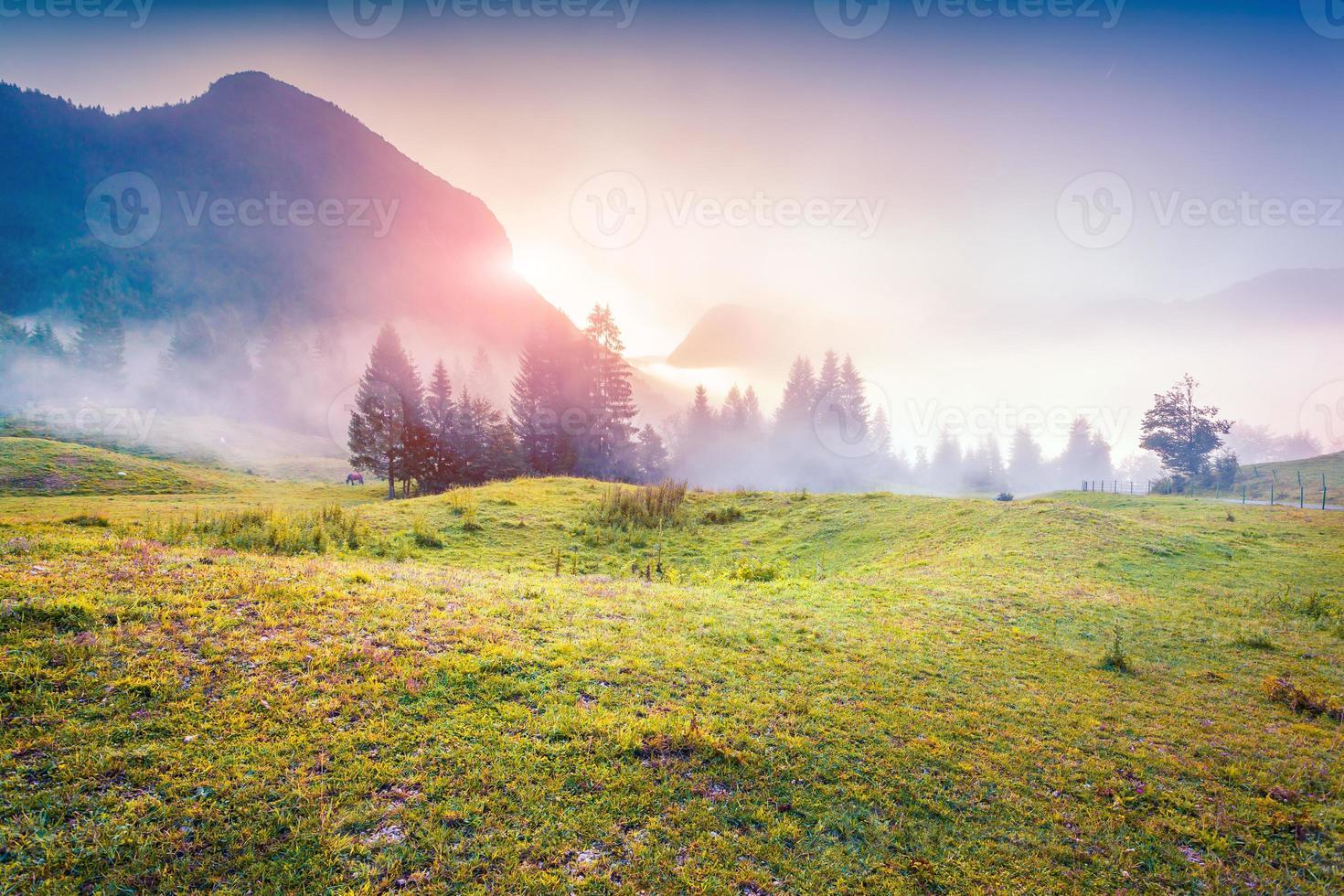 bunter Sonnenaufgang in den nebligen Sommerbergen foto