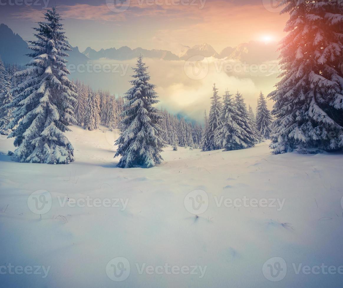 schöner Wintersonnenaufgang in den Bergen. foto