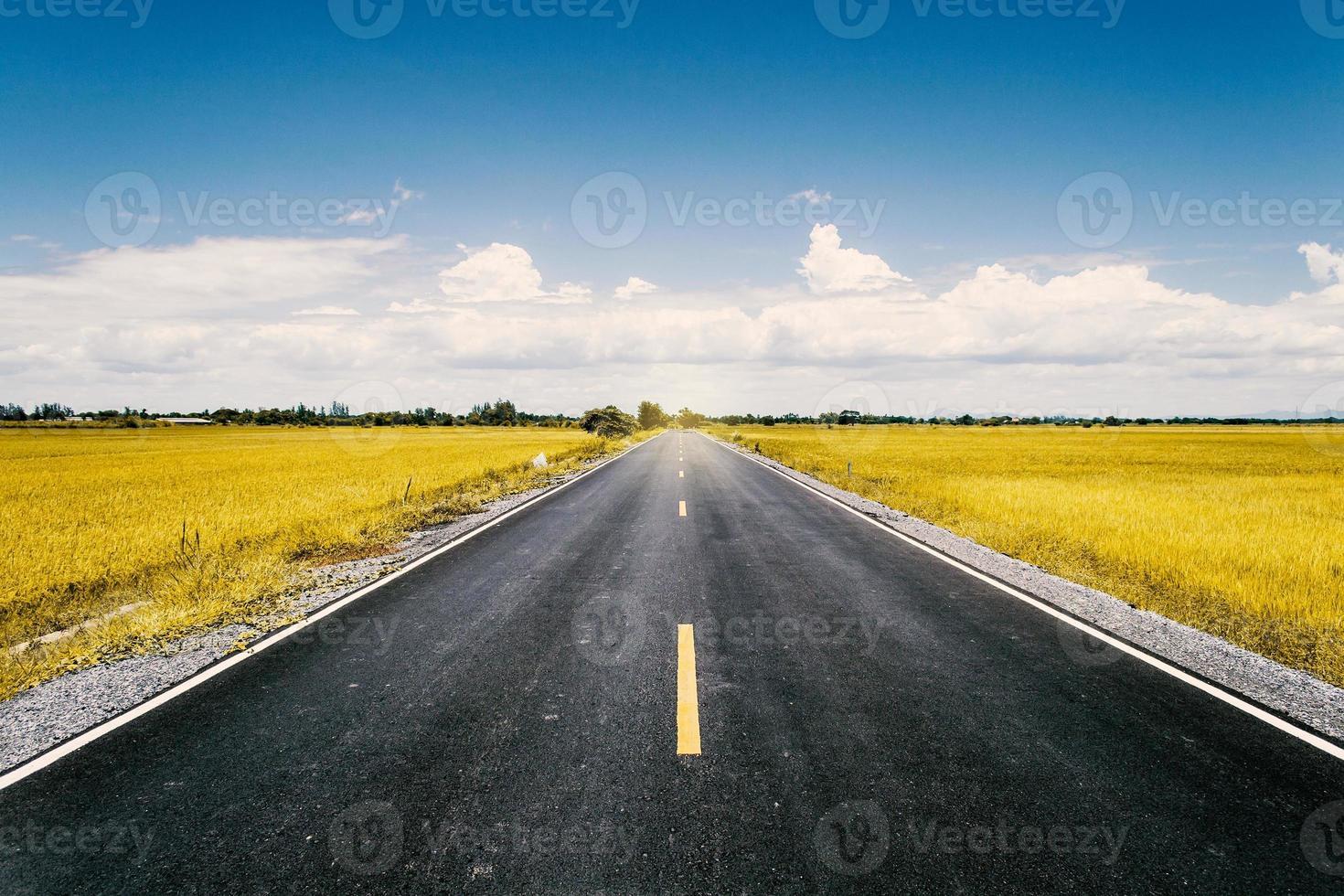 Straße im Reisfeld foto