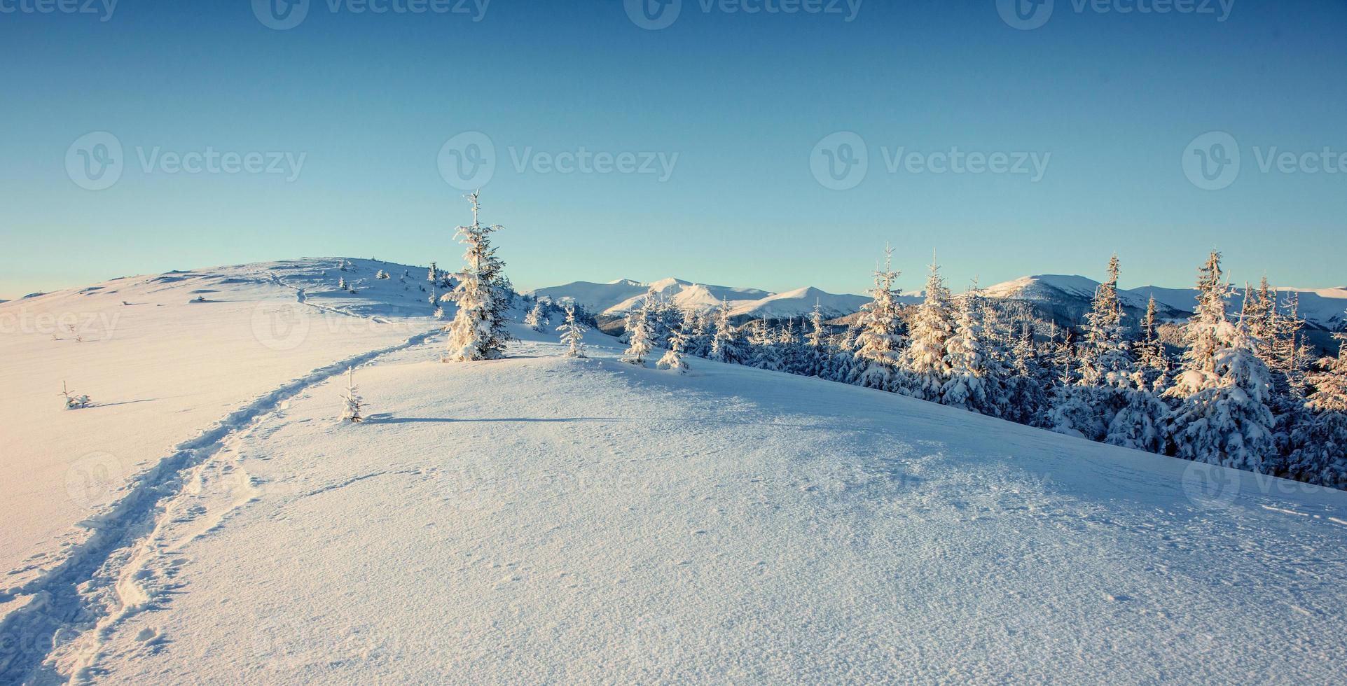 fantastische Winterlandschaft und ausgetretene Pfade, die in die foto