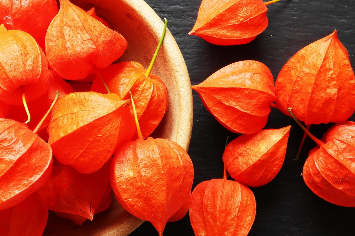 viele orange physalis foto