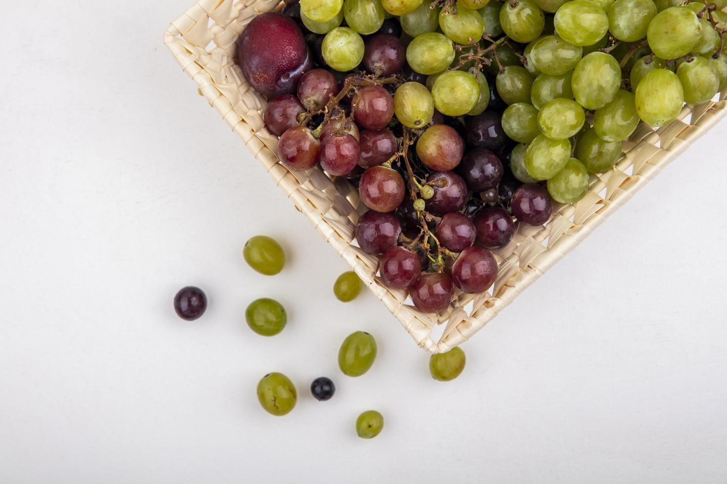 verschiedene Früchte auf neutralem Hintergrund foto