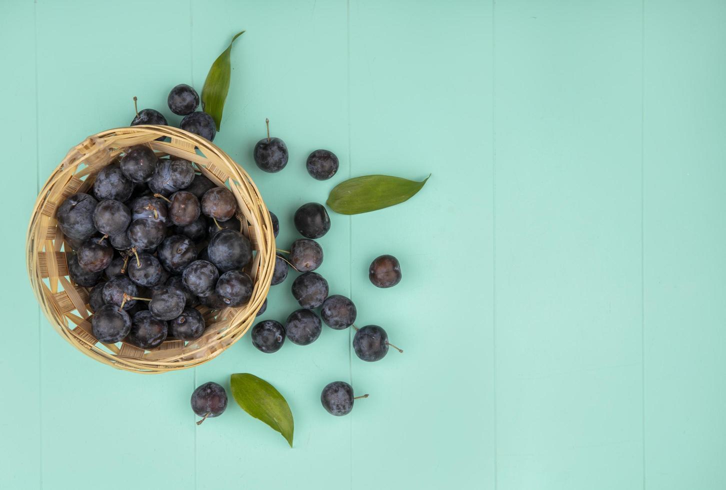 Draufsicht auf die kleinen dunklen Fruchtschollen foto