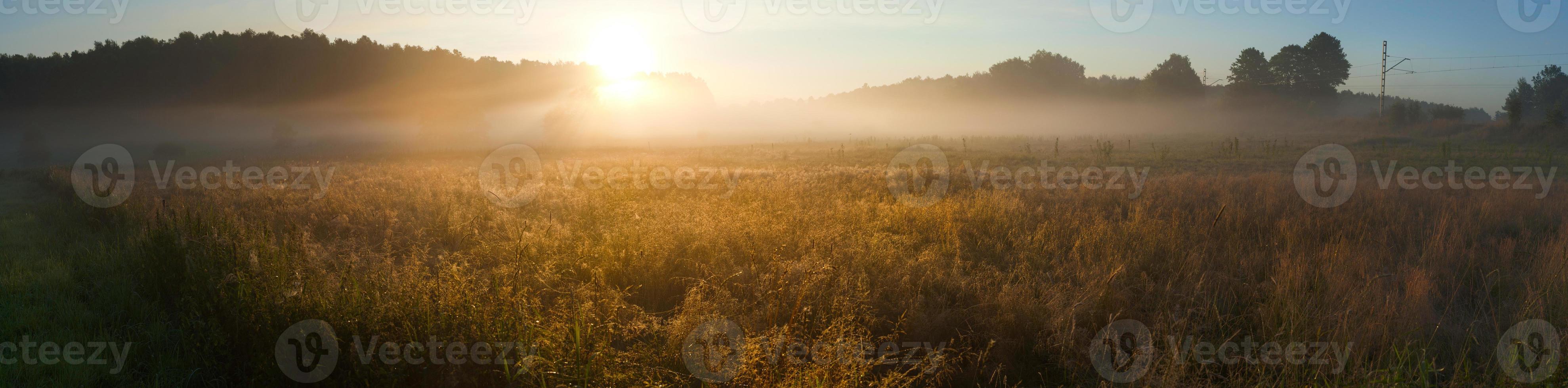 Sonnenaufgang über dem nebligen Feld foto