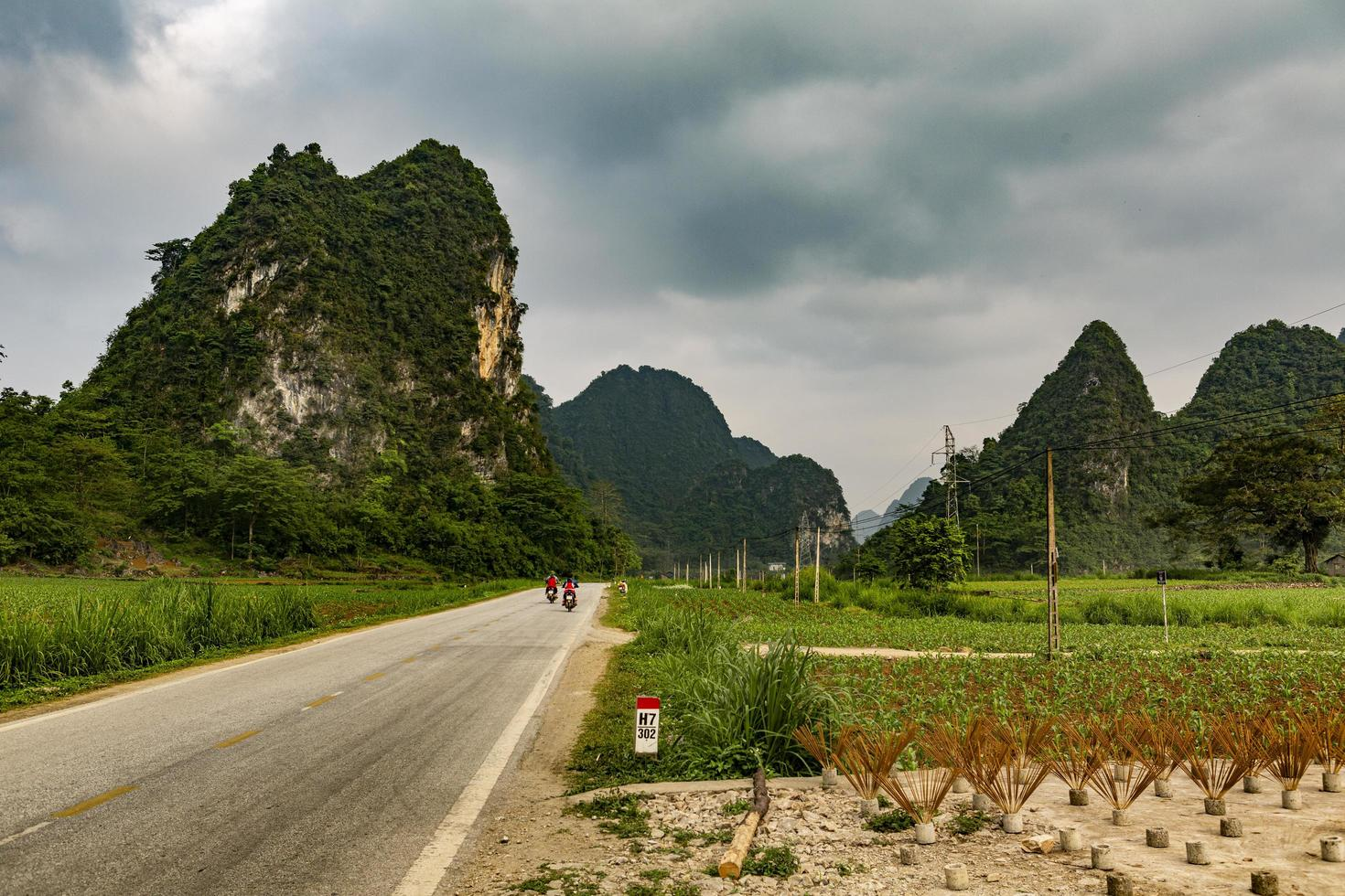 Vietnam, 2017-Reisfeldarbeiter und Familienreisen mit dem Motorrad foto
