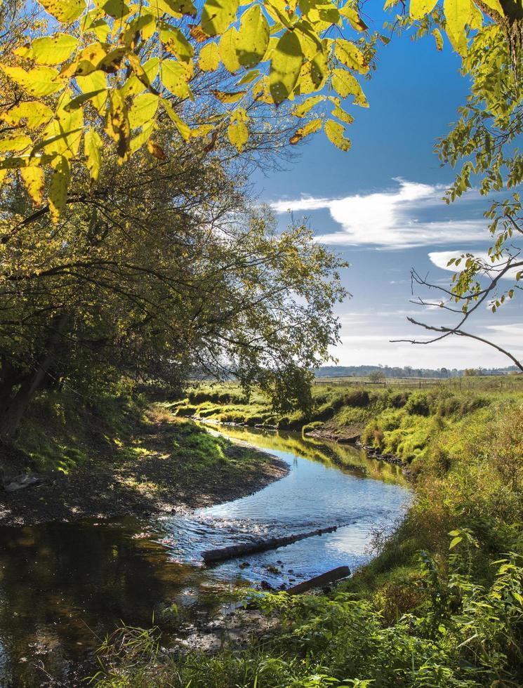 Fluss umgeben von Bäumen an einem sonnigen Tag foto