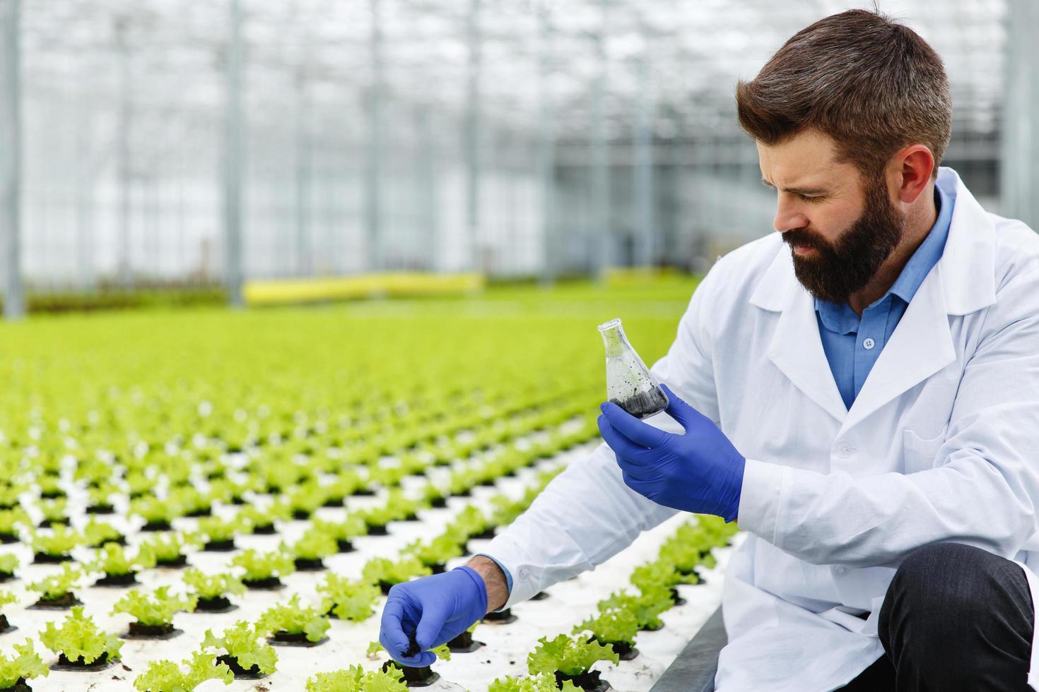 Mann nimmt eine Sonde von Grün in einem Erlenmeyerkolben foto