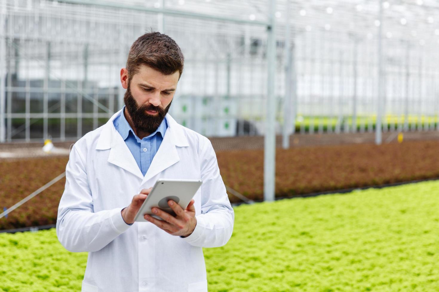 männlicher Forscher, der Pflanzen studiert foto