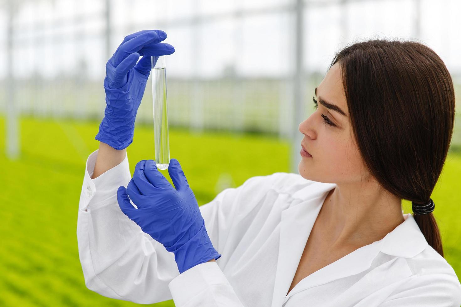 Forscherin hält eine Glasröhre foto