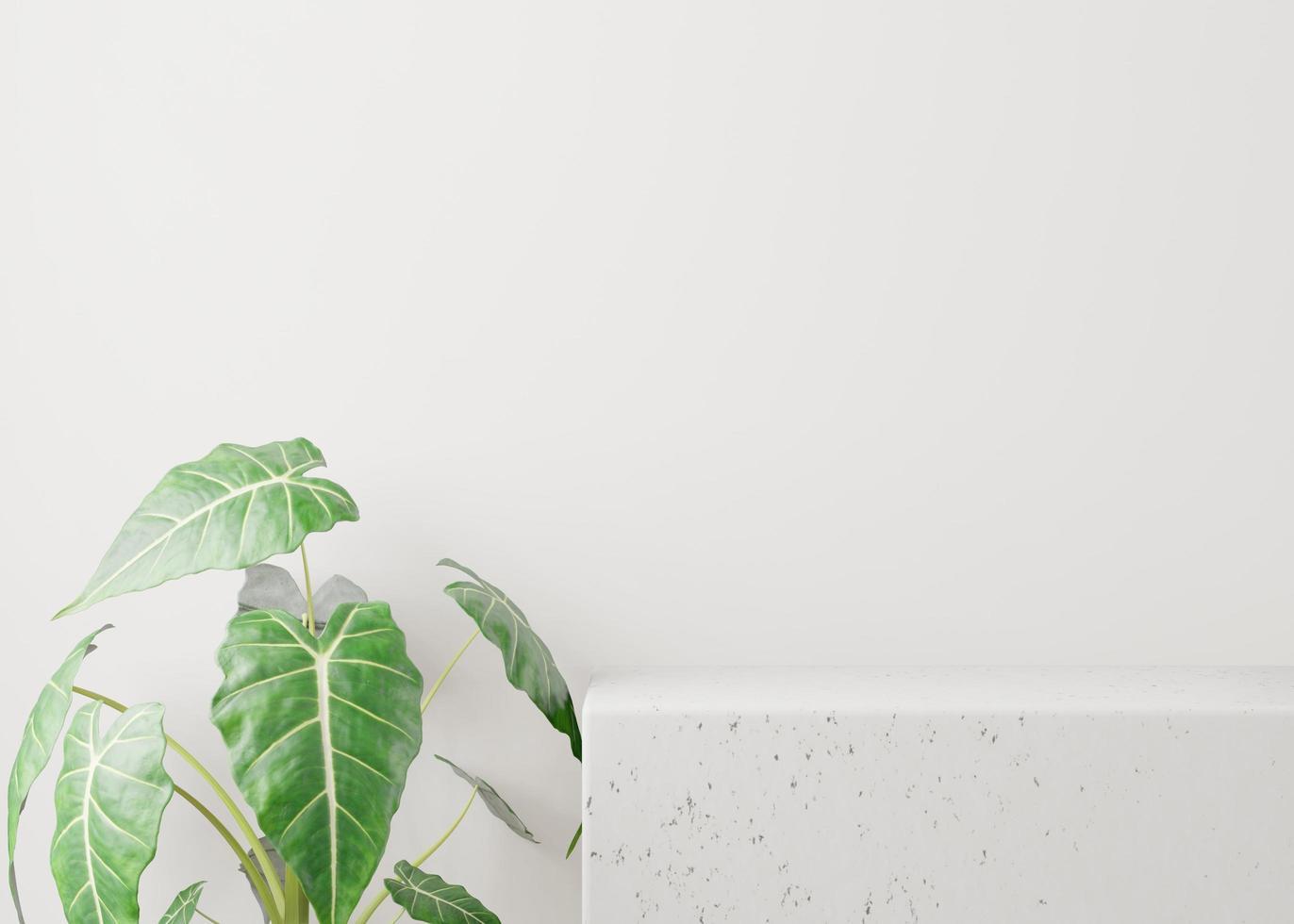 kosmetischer weißer Hintergrund für Produktpräsentation foto