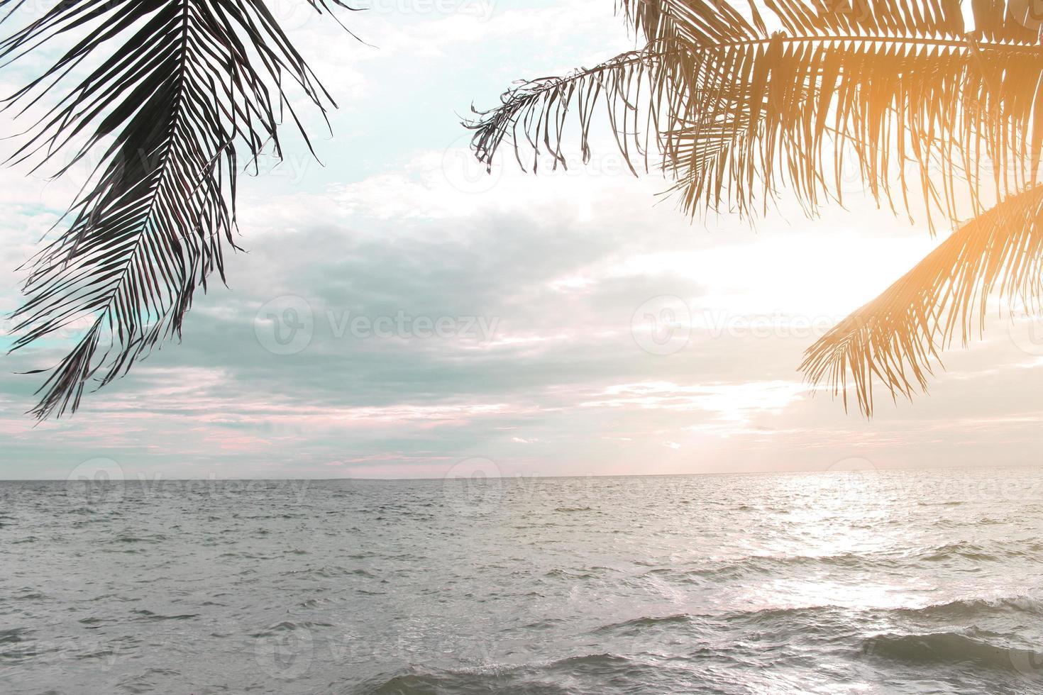 Sonnenaufgang auf dem Meer mit Kokosnussblättern foto