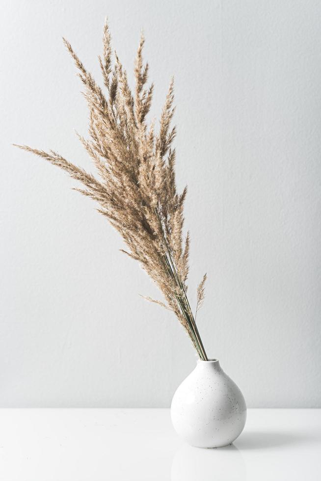 dekoratives Gras in weißer Vase foto