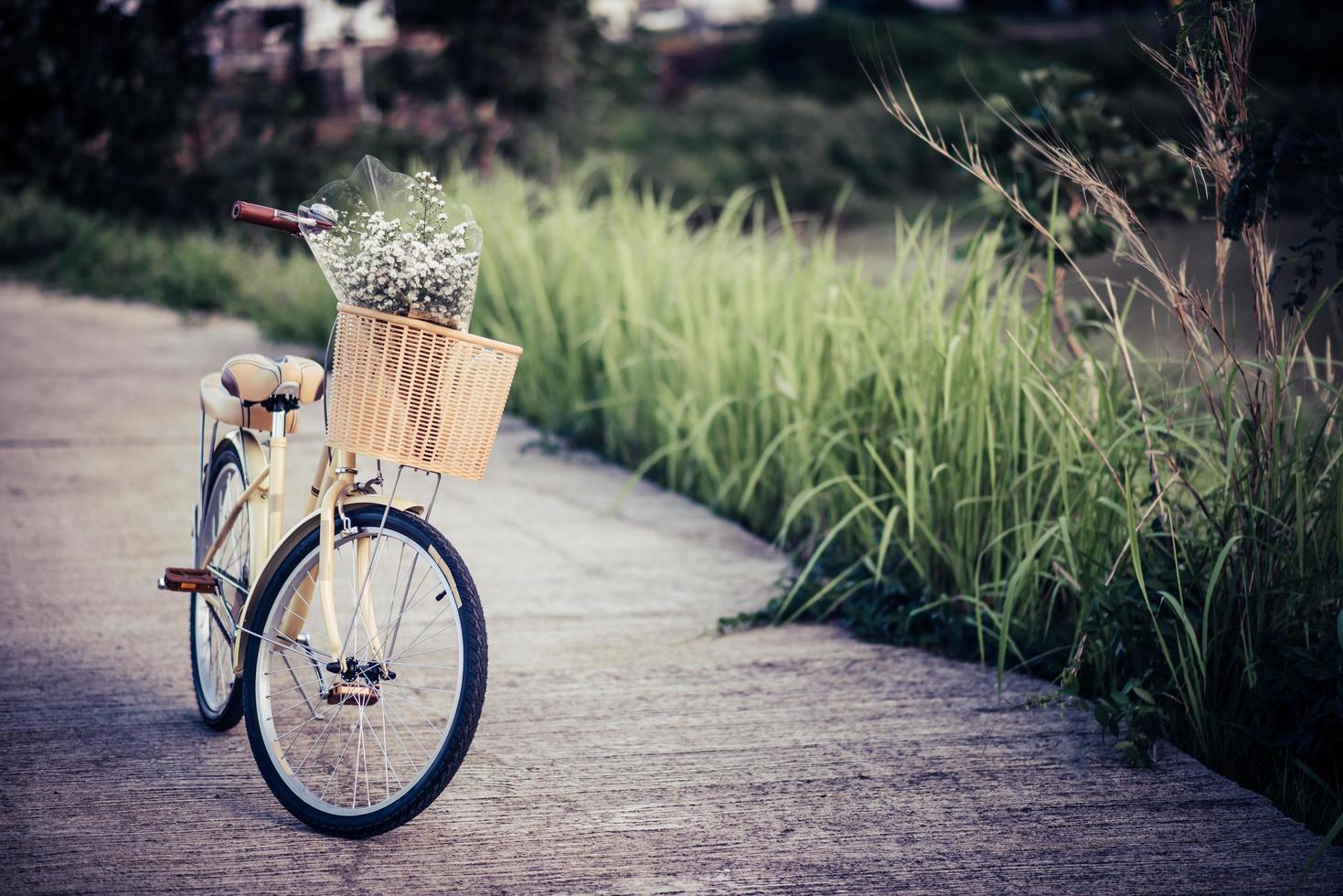 Fahrrad auf der Straße im Park geparkt foto