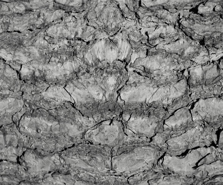 abstrakter Steinbeschaffenheitshintergrund foto
