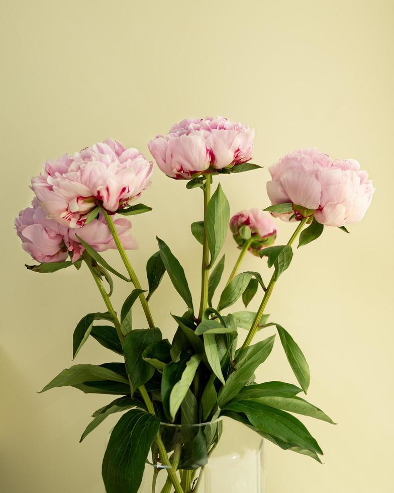 Vase mit rosa Pfingstrosen foto