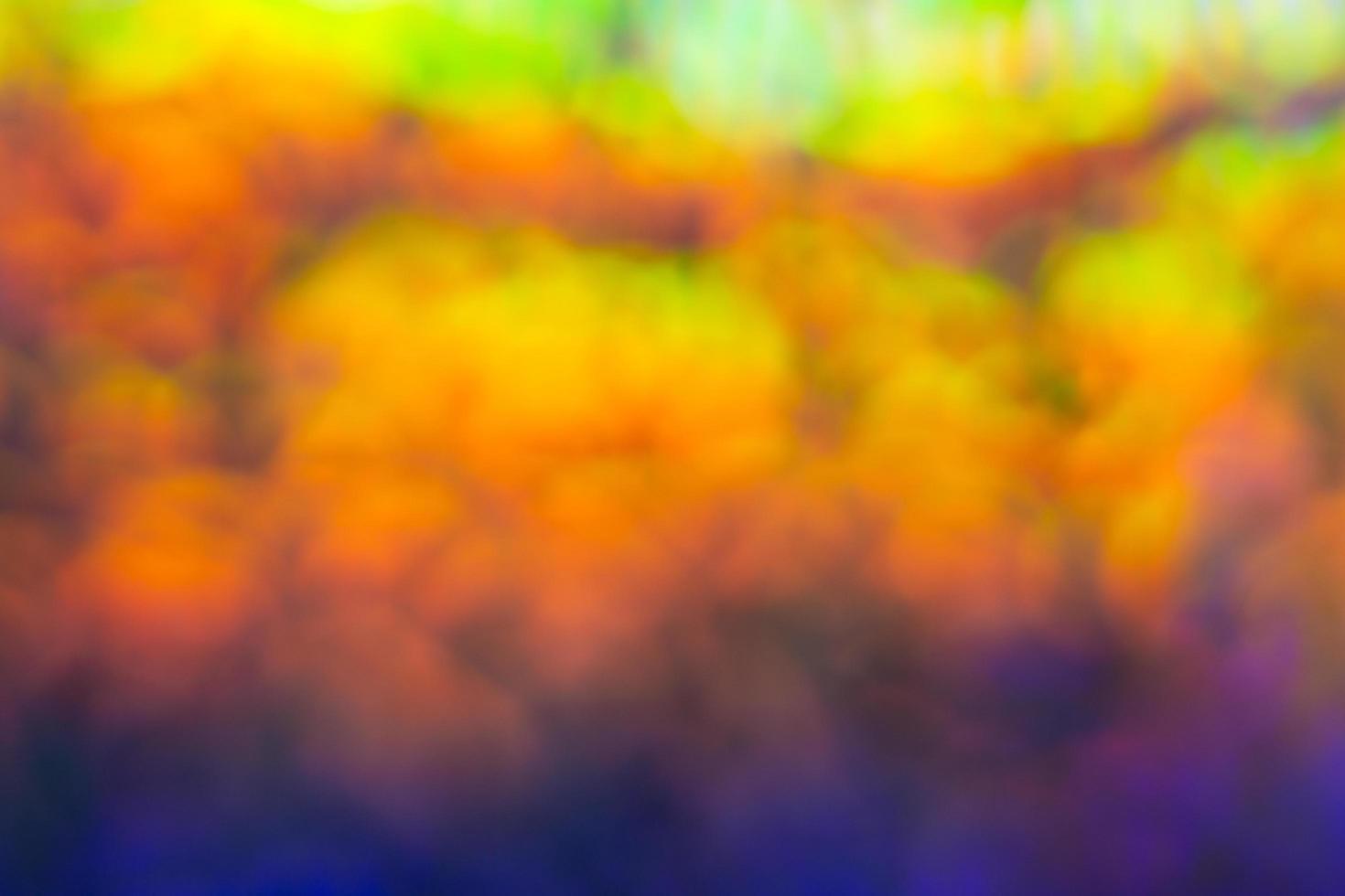 unscharfer Bokeh-Hintergrund foto