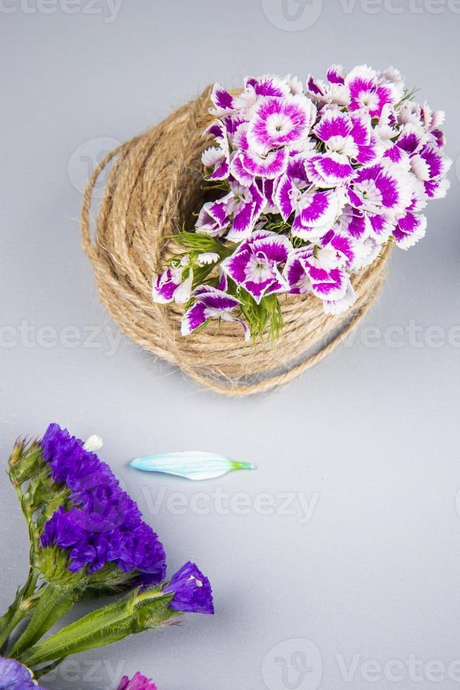 lila und weiße Blumen auf einem weißen Hintergrund foto