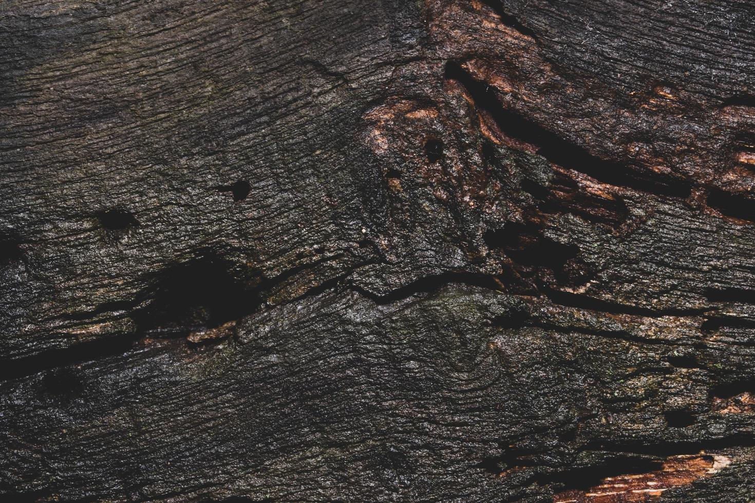 dunkler Holzbodenhintergrund foto