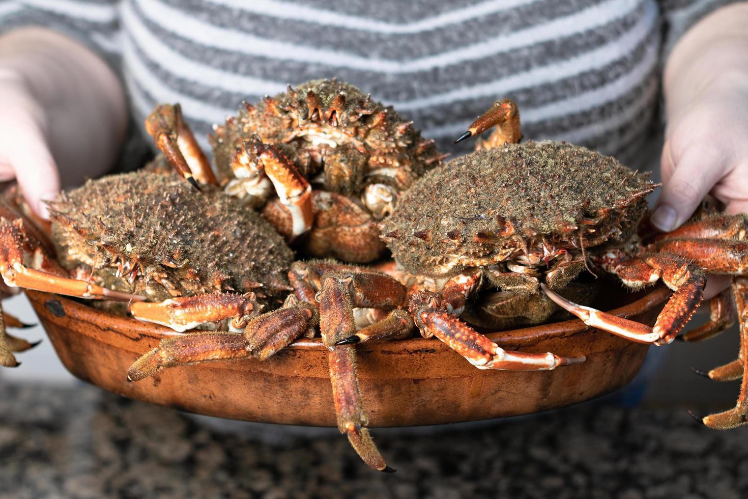 Person, die Krabben hält foto