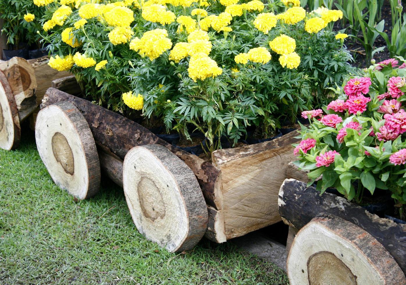 gelbe Blumen in einem Holzwagen foto
