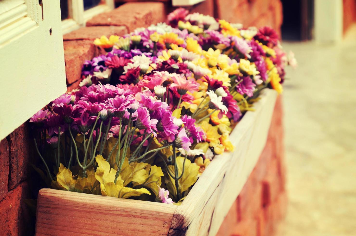 Blumenfensterbox foto