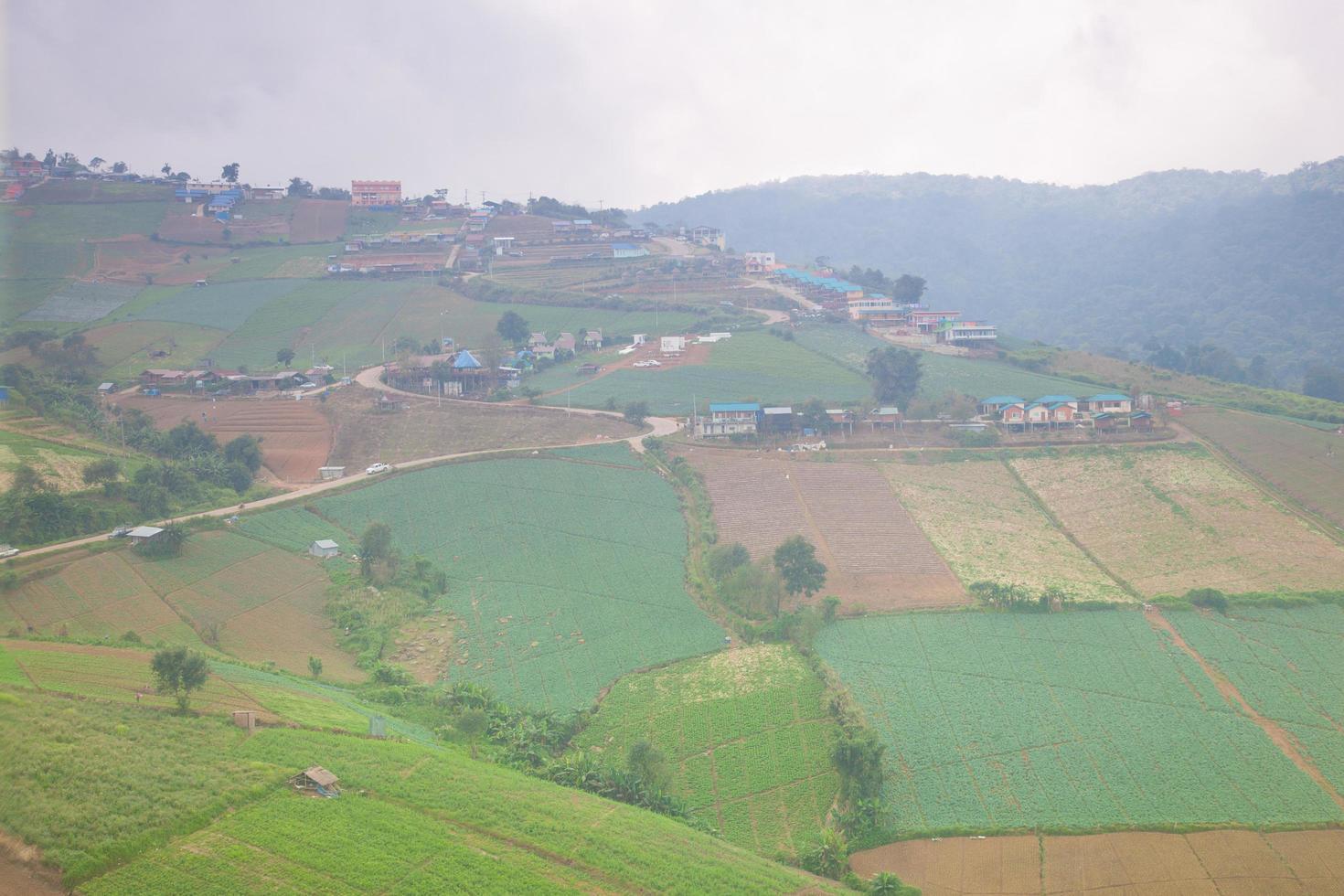 Bauernhöfe in den Bergen in Thailand foto