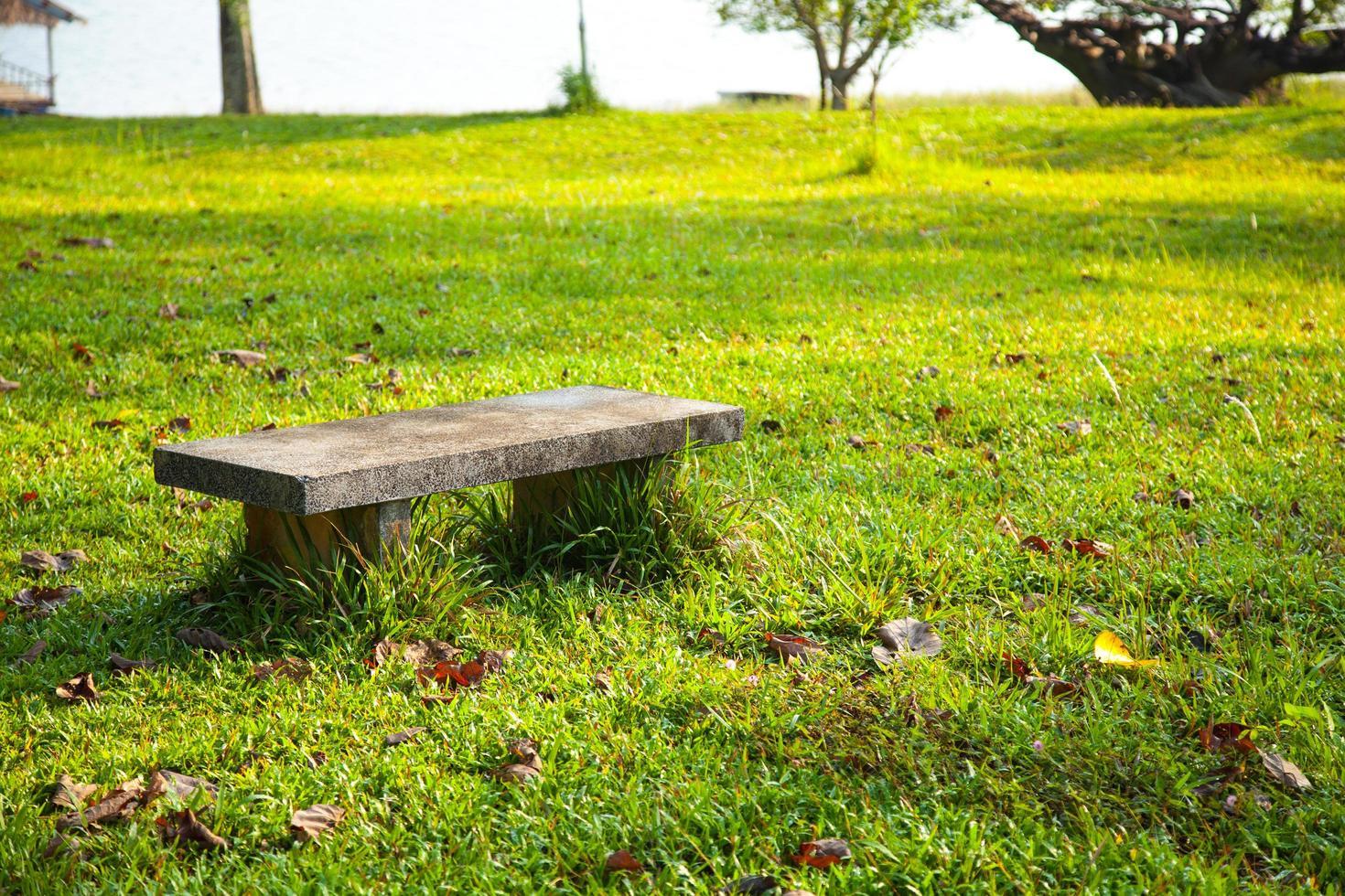 Steinbank auf dem Rasen foto