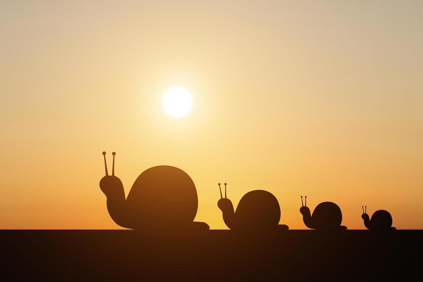 Schattenbild einer Schnecke auf Sonnenunterganghintergrund foto