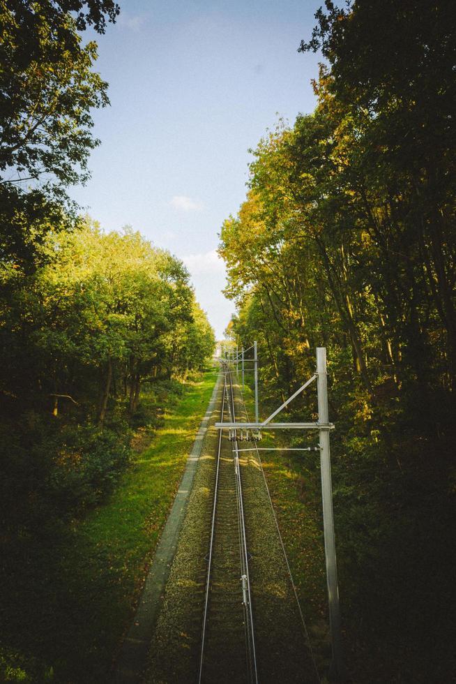 perspektivische Aufnahme von Eisenbahnschienen foto