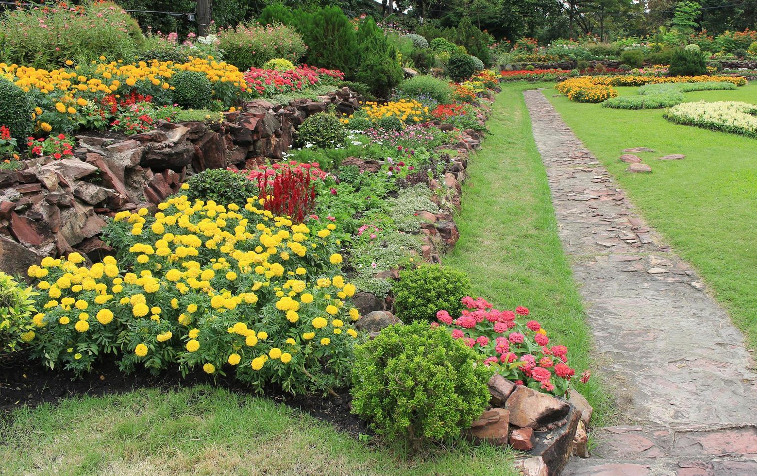 Seitenansicht von Blumenbeeten foto