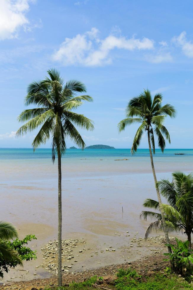 Sommerstrand in Thailand foto