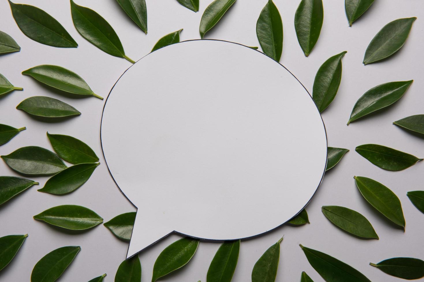 Blätter auf weißem Hintergrund mit Platz für Text foto