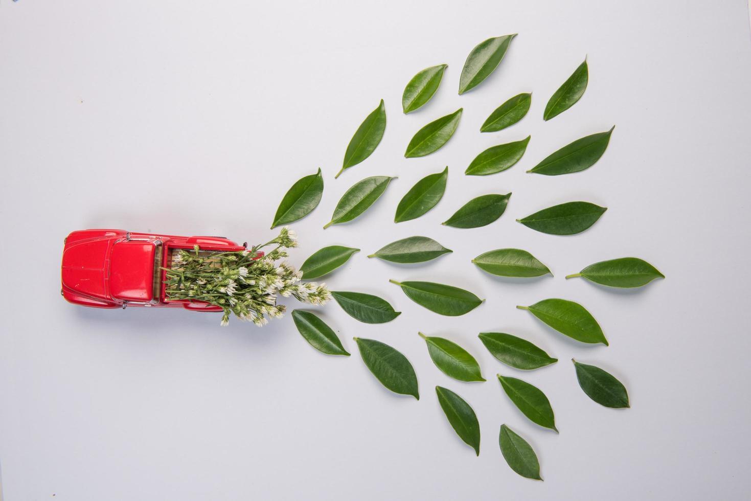 Automodell und Blätter auf weißem Hintergrund foto