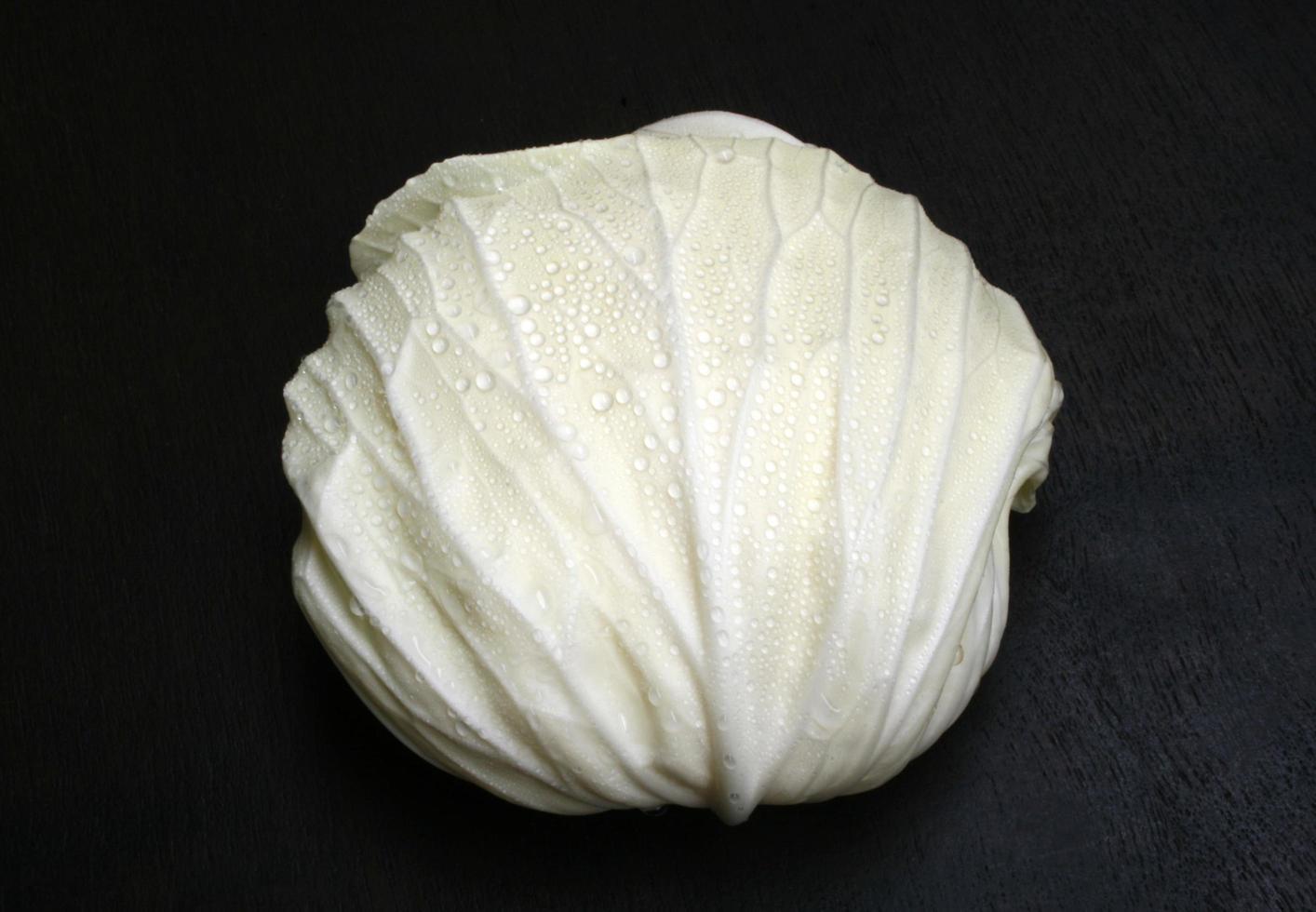 Weißkohl auf einem schwarzen Hintergrund foto