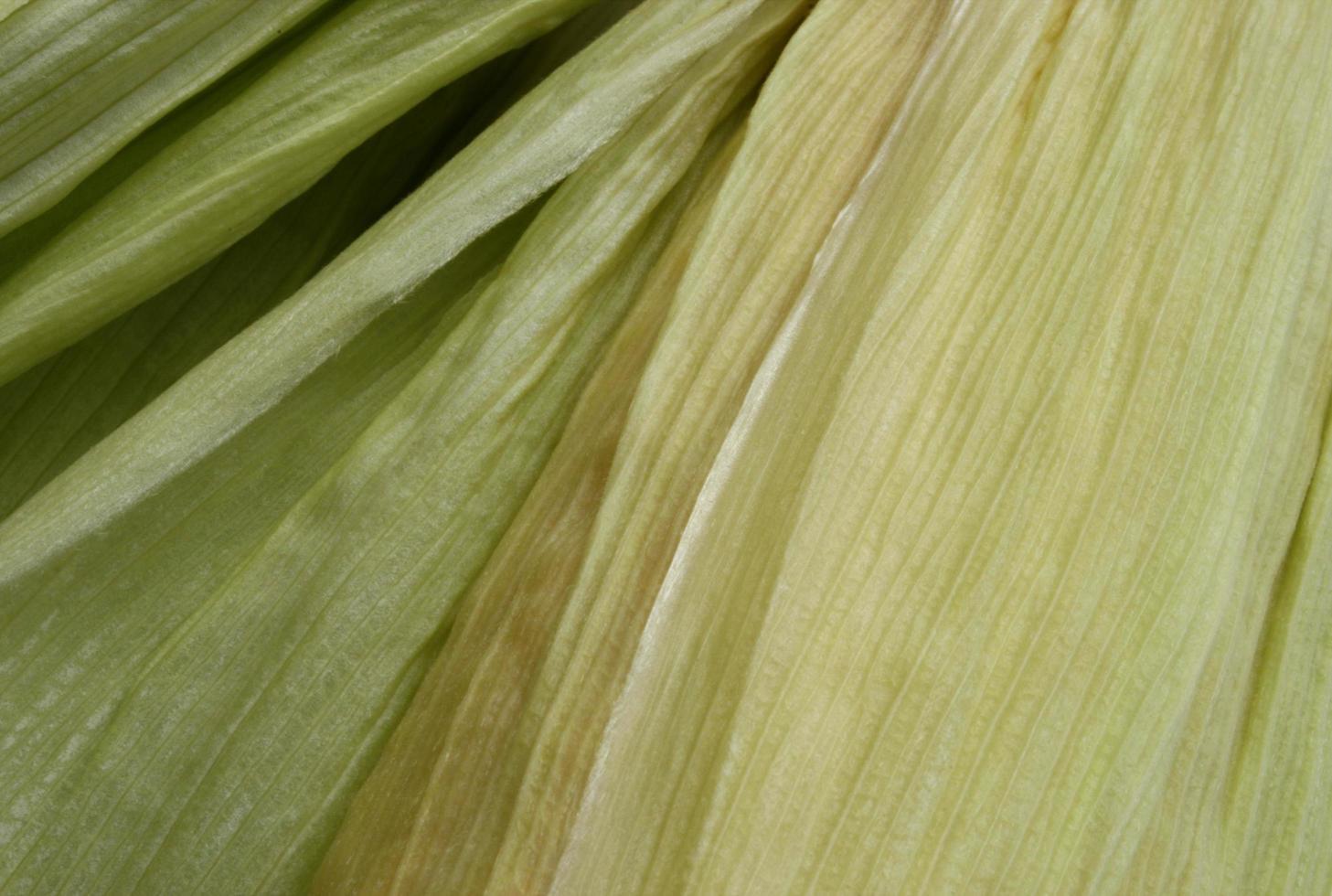 Nahaufnahme von Maisschalen foto