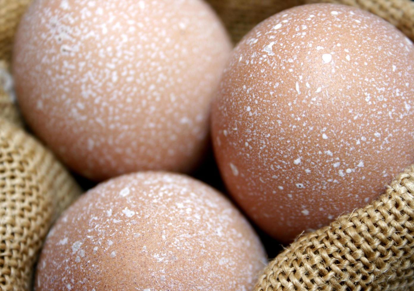 braun gesprenkelte Eier foto