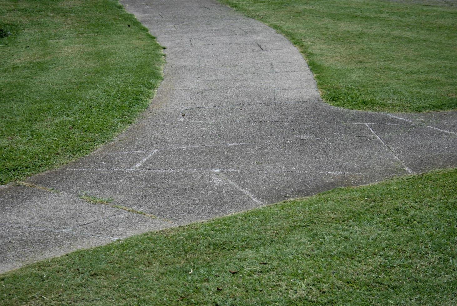 Bürgersteiggang im grünen Gras foto