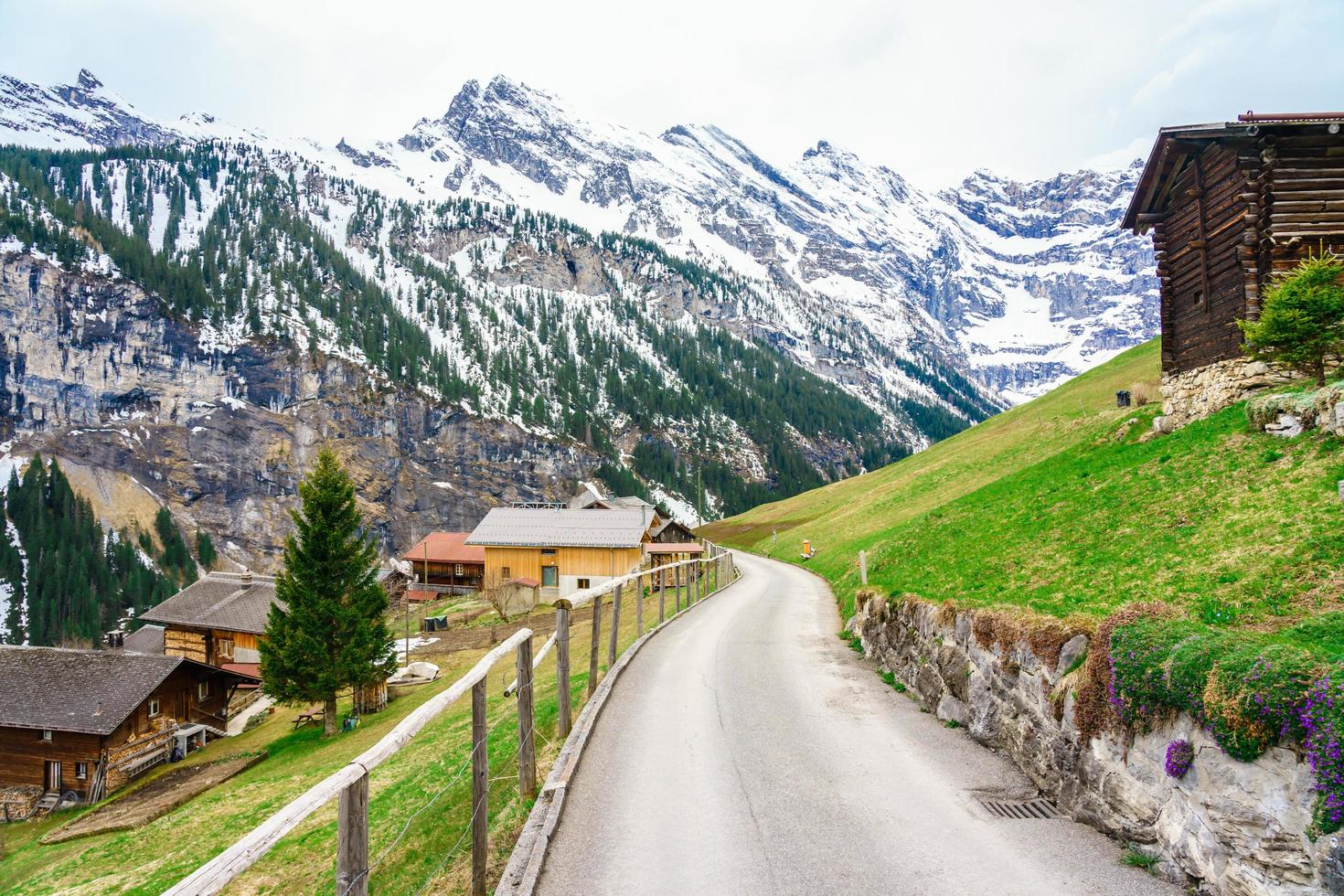 die alpen bei gimmelwald und murren in der schweiz foto