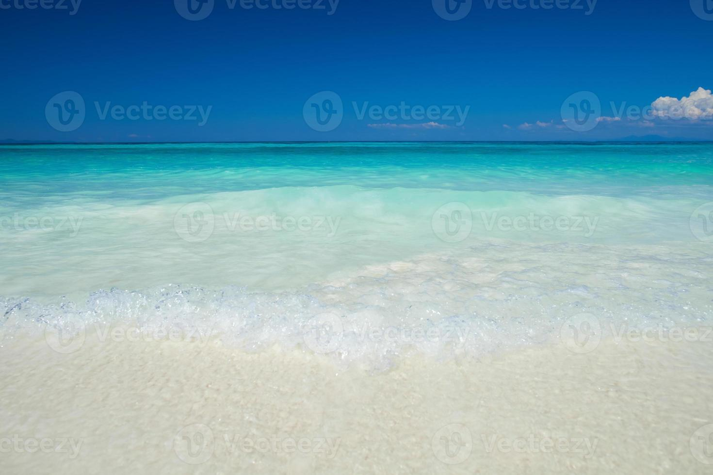 tropischer Strand tagsüber foto