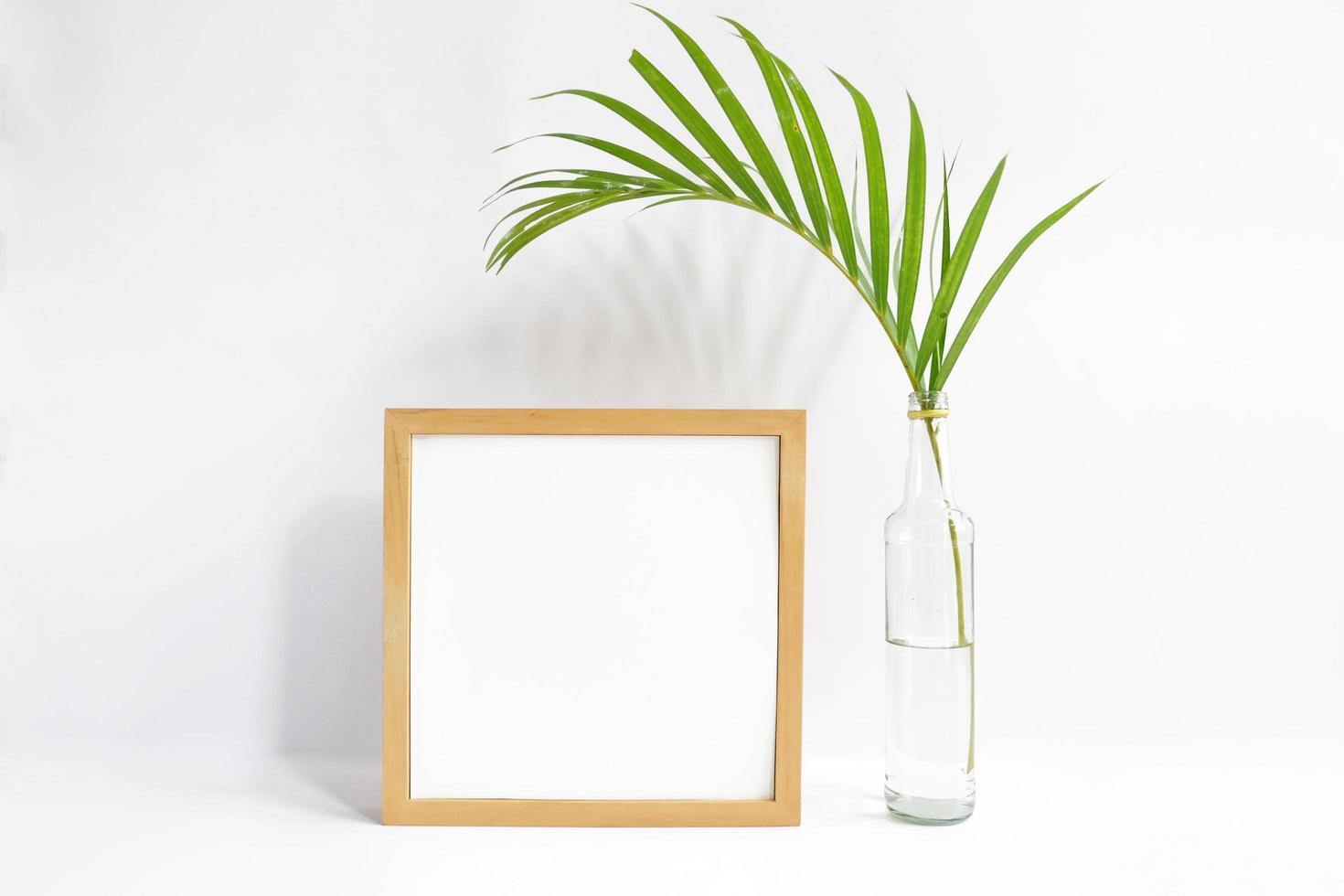 leerer Rahmen mit Pflanze auf weißem Hintergrund foto