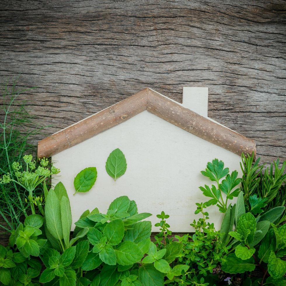 Holzhaus und Kräuter foto
