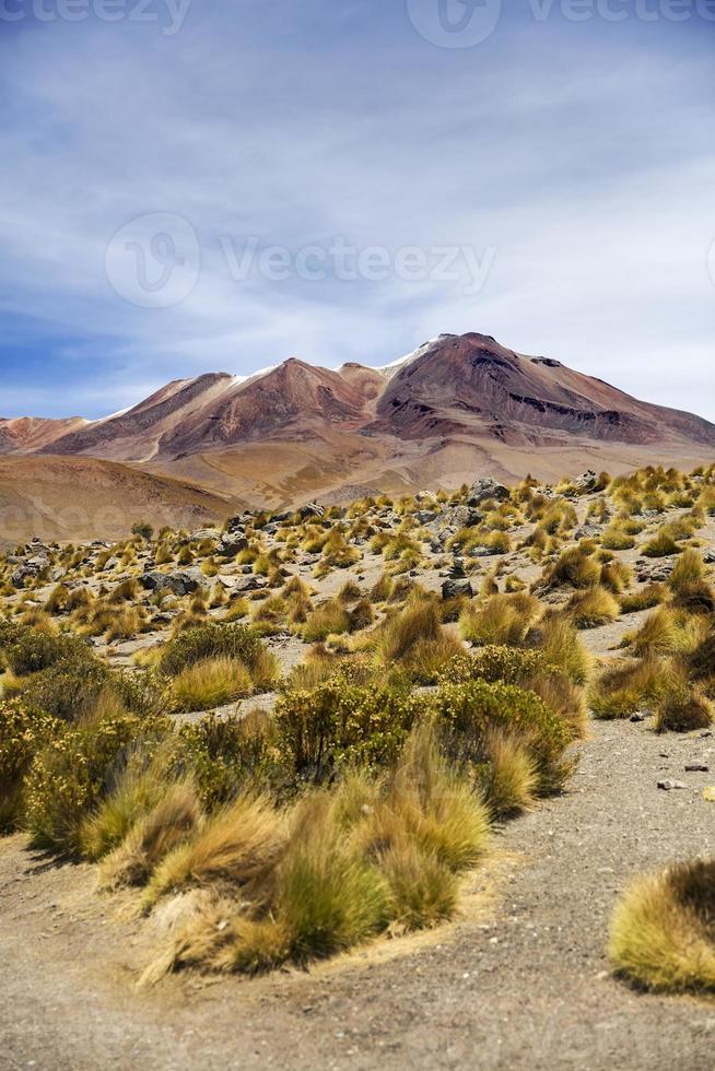 Laguna Colorado in Bolivien foto