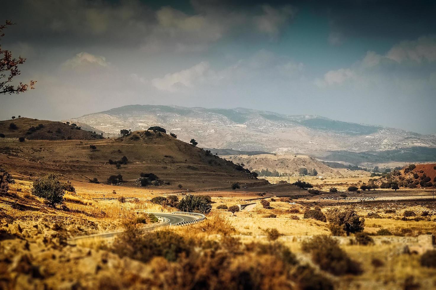 Mittelmeerlandschaft mit gelben Hügeln und Büschen foto