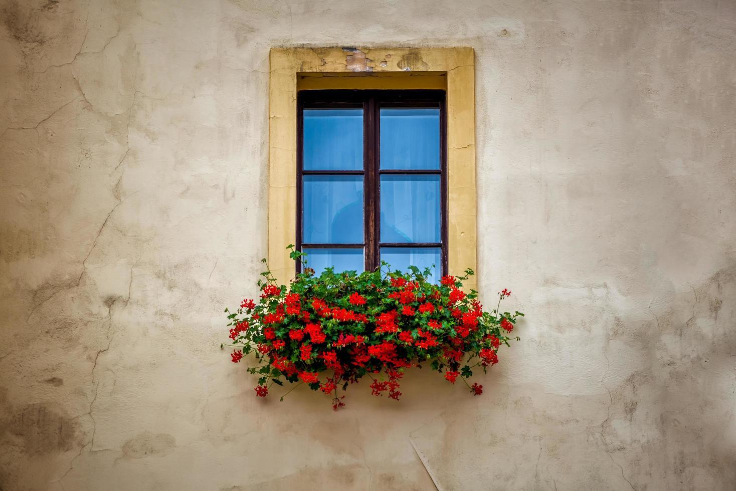 alter Fensterrahmen mit Blumenkasten foto