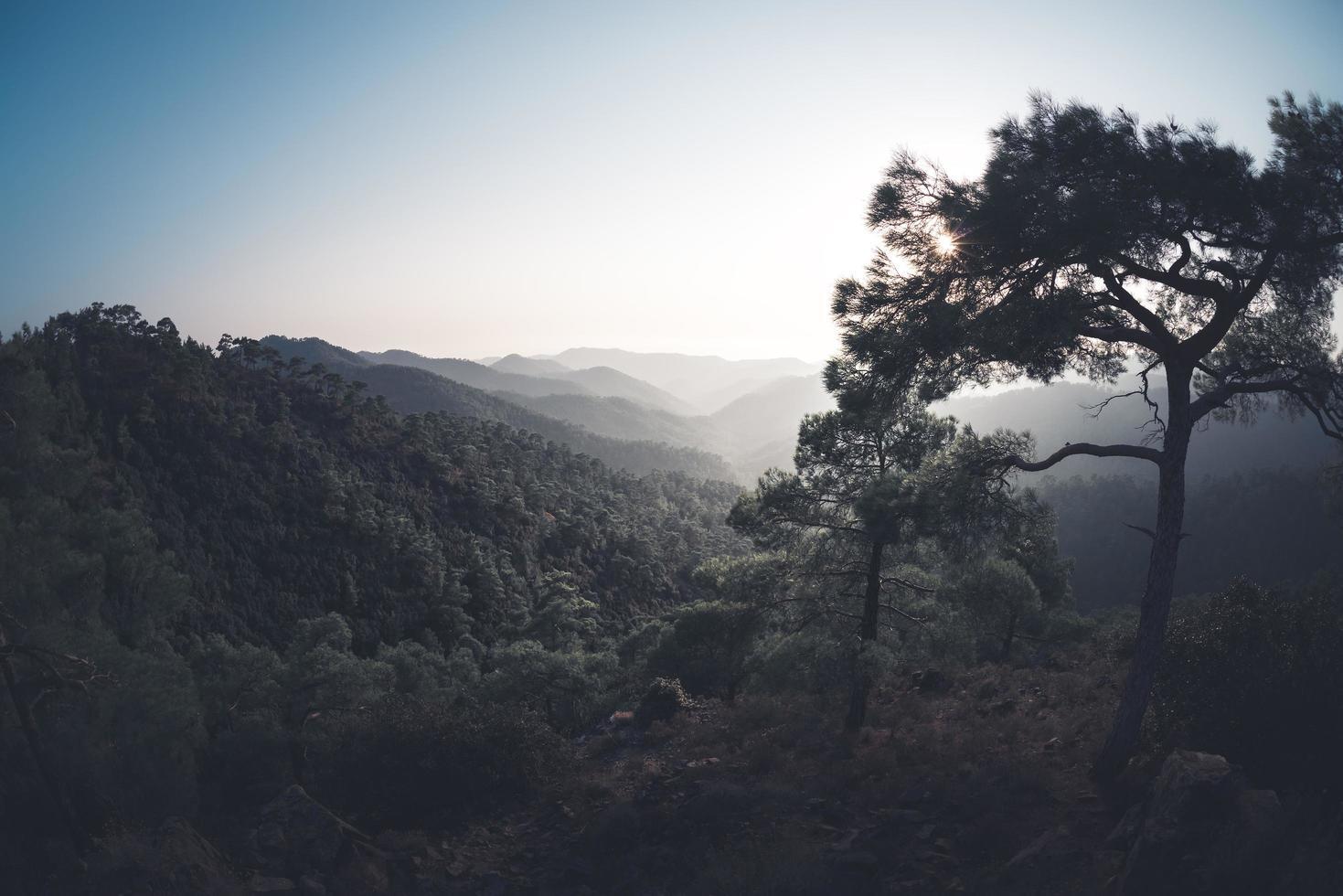 dunstige Berge von Troodos, Zypern foto